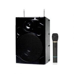 בידורית נטענת 80W כולל מיקרופון אלחוטי ונגן דיסקים מובנה